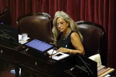 María Pilatti Vergara, chaqueña, en la sesión por los fondos buitre.