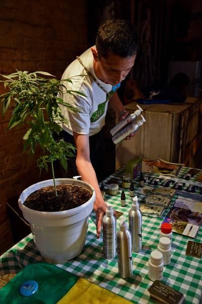 Planta de marihuana con sus productos y derivados, usados con fines terapéuticos, en una feria de Bogotá (AFP)