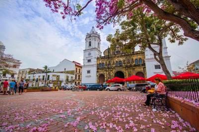 Vista de la Plaza de la Catedral y la Basílica Metropolitana de Santa María la Antigua (cascoviejo.org).