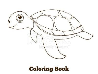 著色書龜海動物卡通教育圖剪貼畫  +1566198剪貼畫