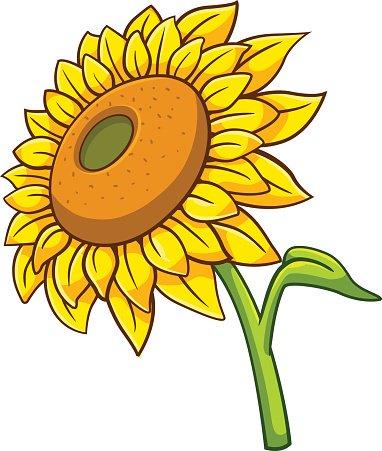 solros tecknad stil premium clipart