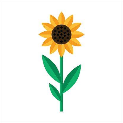 sonnenblume symbol im flachen stil