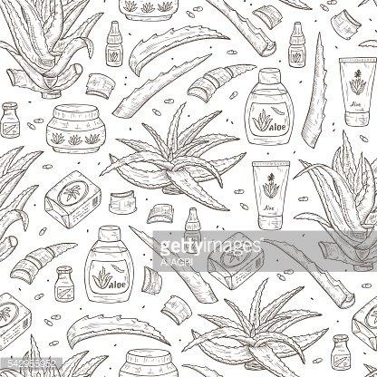Cosméticos DE Patrones Sin Fisuras DE Aloe Y Aloe Vera