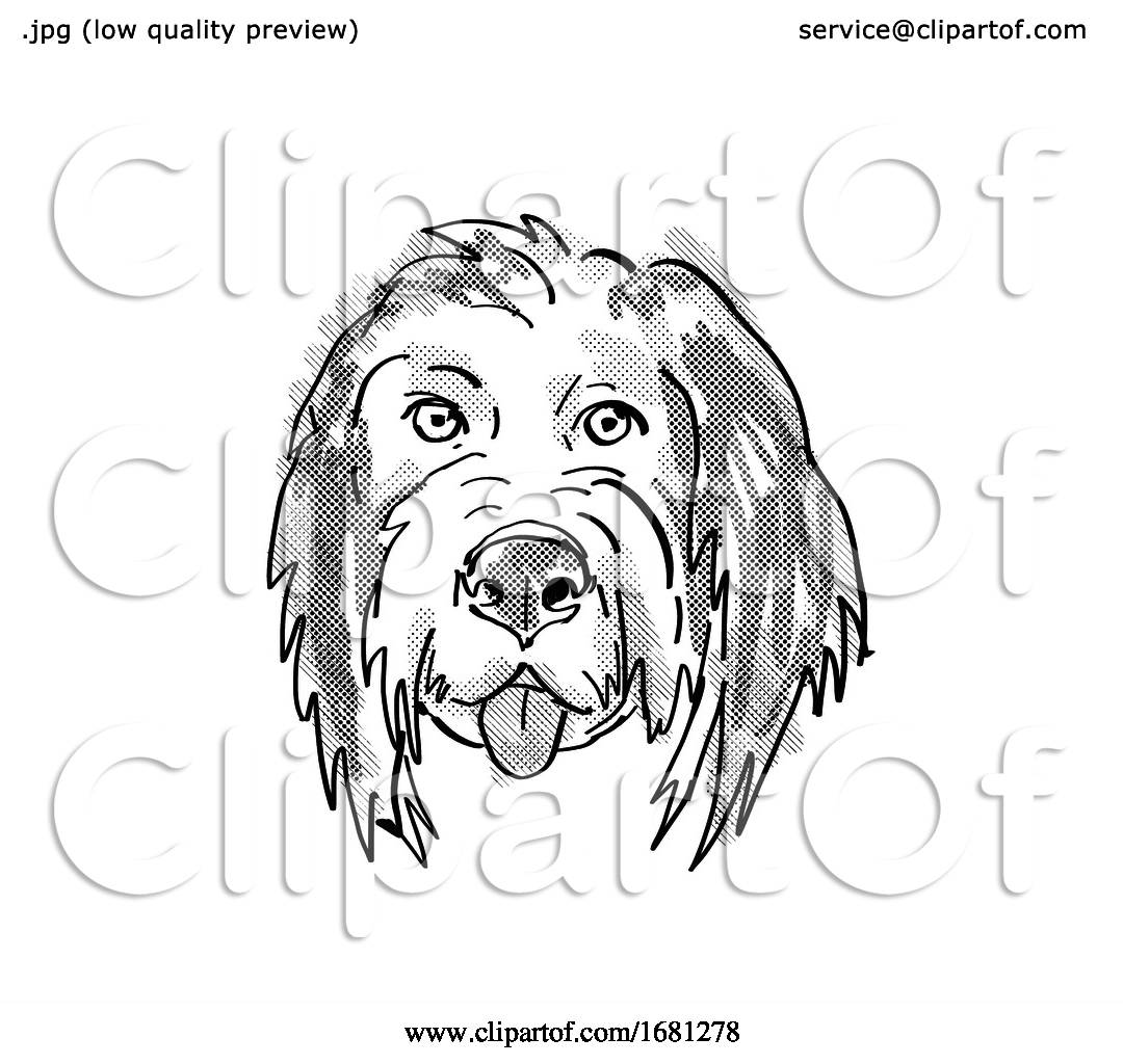 Bernedoodle Or Bernese Mountain Poo Dog Breed Cartoon