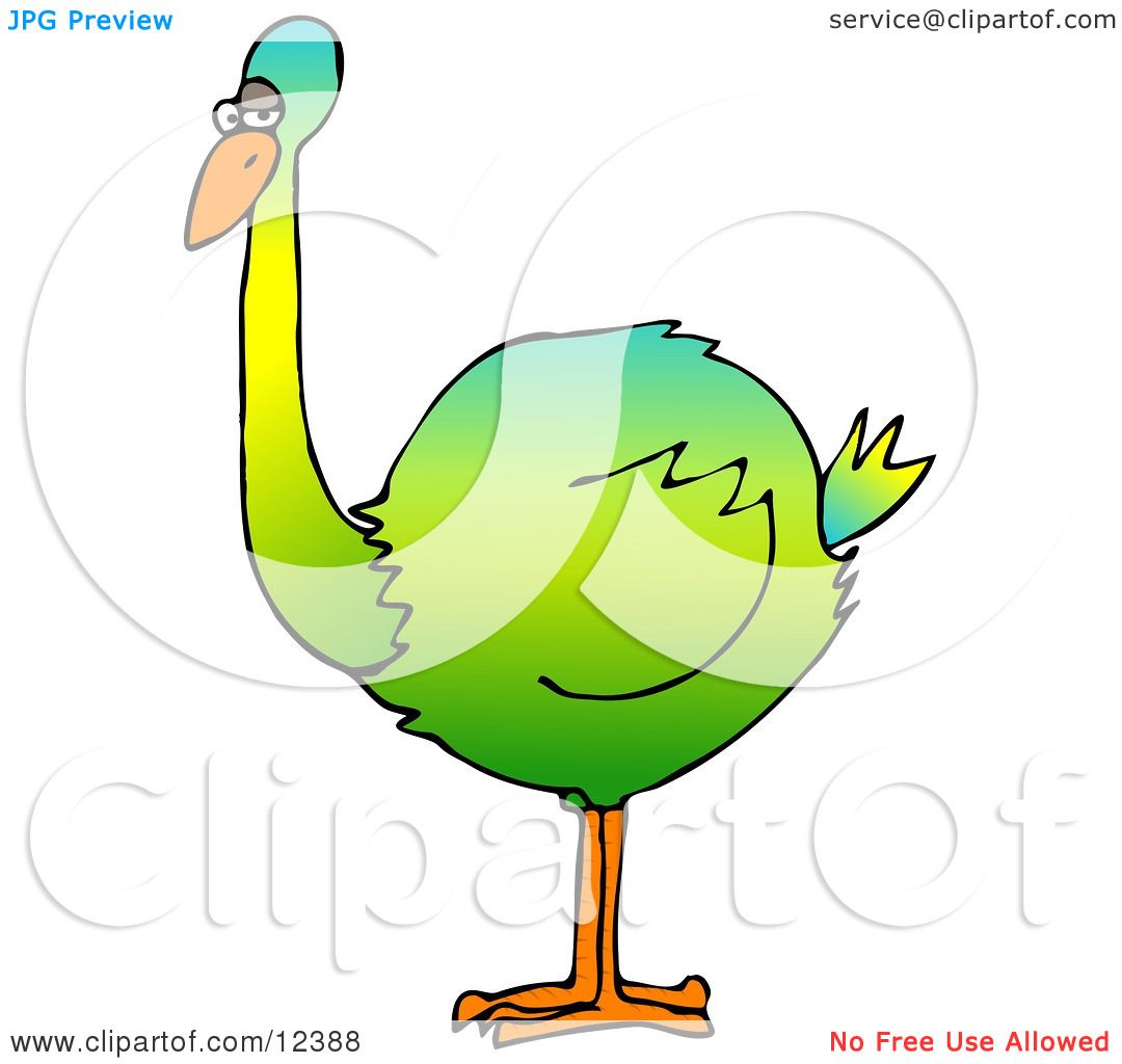 hight resolution of big colorful green flightless bird clipart picture by djart