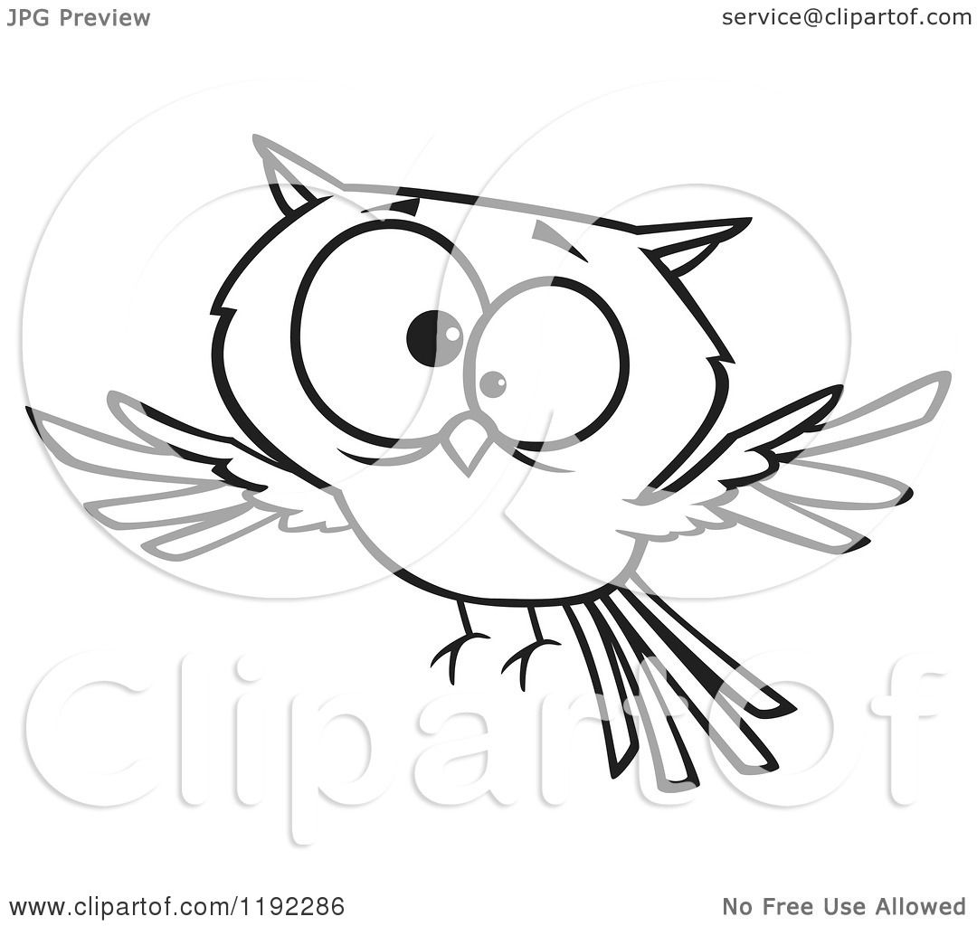 Cartoon Black And White Line Art Of A Cross Eyed Owl