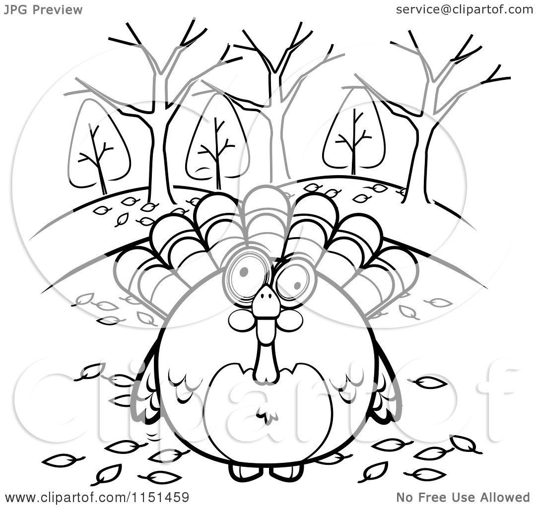 Cartoon Clipart Of A Black And White Turkey Bird