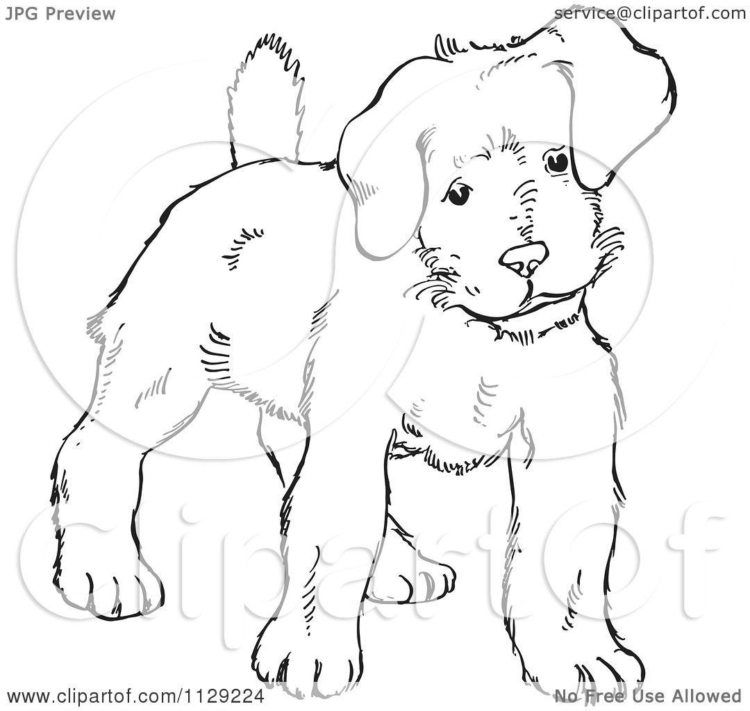 Cartoon Clipart Of An Outlined Alert Puppy Dog
