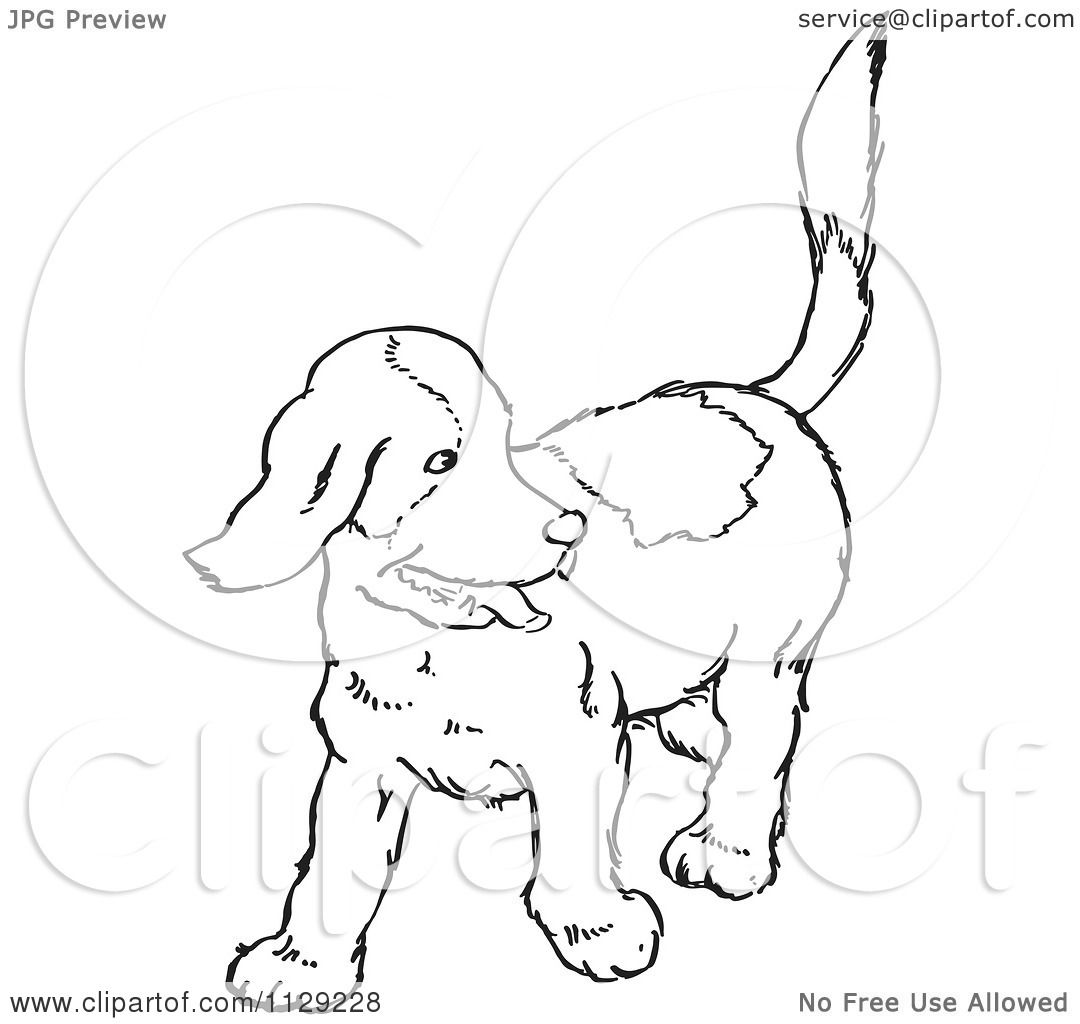 Cartoon Clipart Of An Outlined Happy Puppy Looking Back