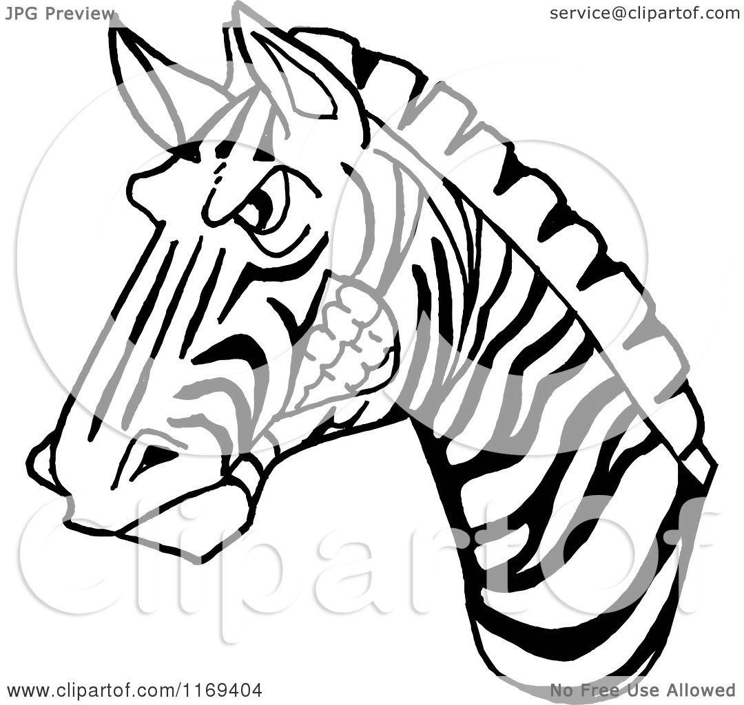 Cartoon Of A Black And White Aggressive Zebra Head