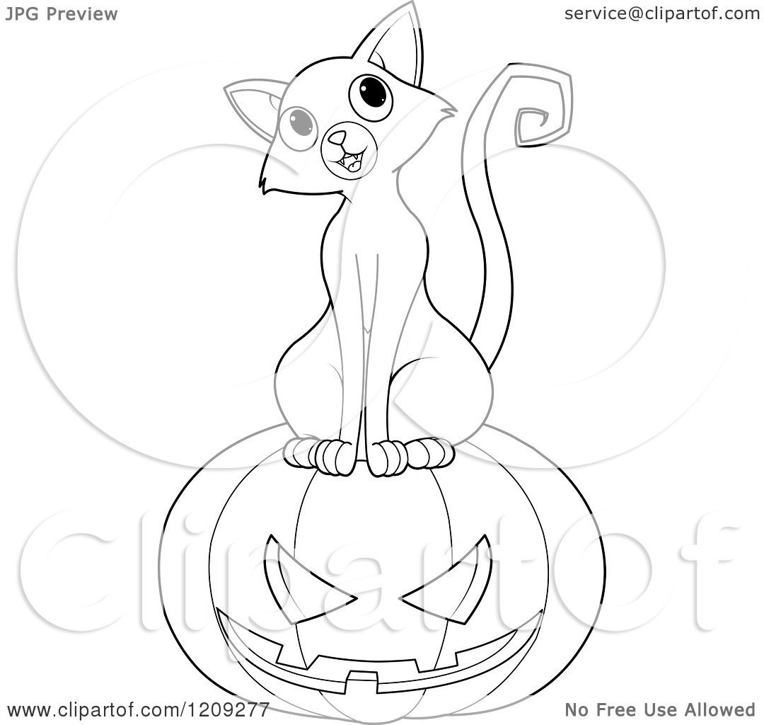 Cartoon Of A Black And White Curious Cat Sitting On A