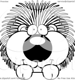 cartoon of a black and white cute happy porcupine over a surface or sign royalty free vector clipart by cory thoman [ 1080 x 1024 Pixel ]
