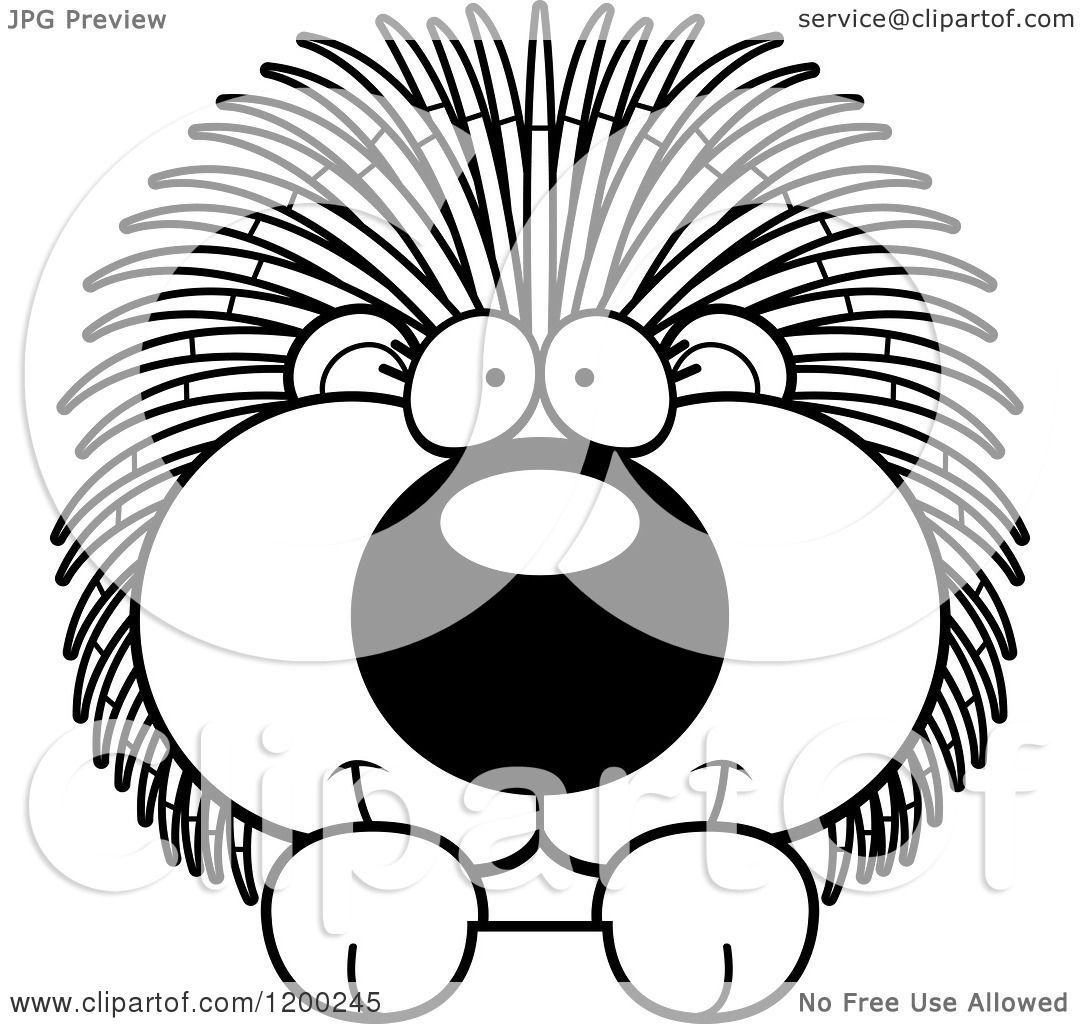 hight resolution of cartoon of a black and white cute happy porcupine over a surface or sign royalty free vector clipart by cory thoman