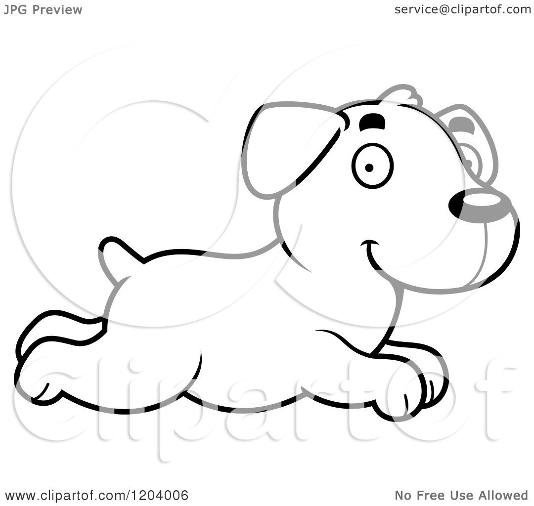 Cartoon Of A Black And White Cute Labrador Puppy Running