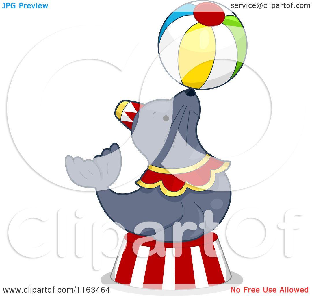 Cartoon Of A Circus Seal Balancing A Ball Royalty Free