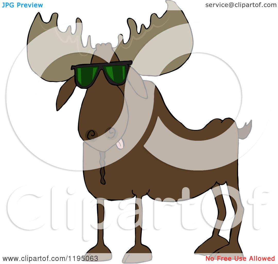 hight resolution of cartoon of a cool moose wearing sunglasses royalty free vector clipart