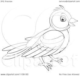 bird cute clipart cartoon vector bannykh alex illustration royalty collc0056 protected