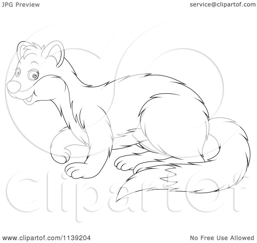 weasel clipart