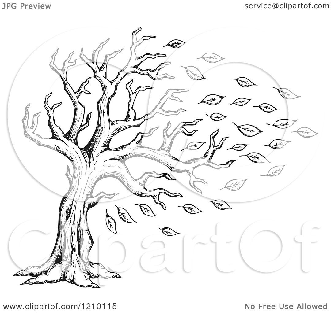 Fall Tree Clip Art Black And White