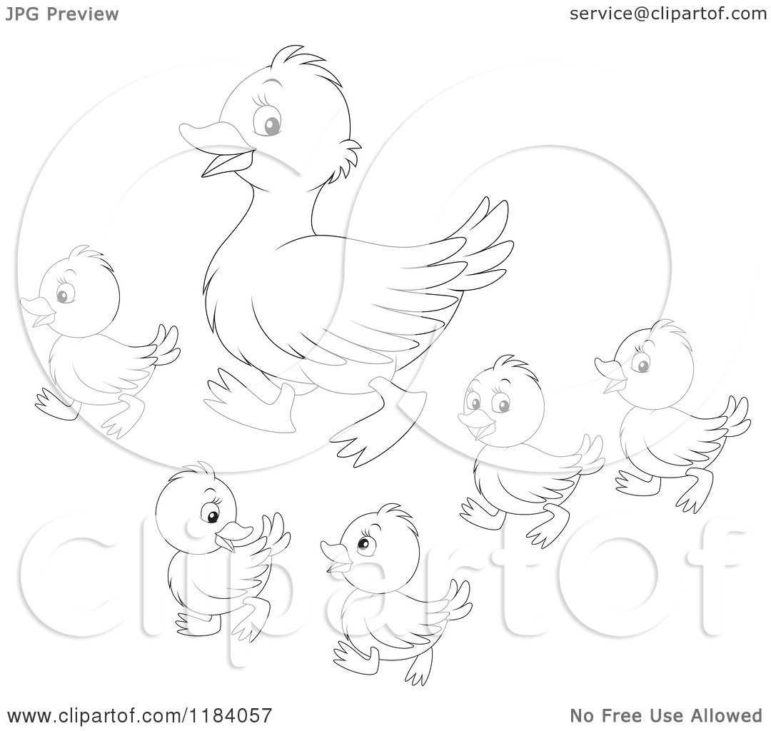 Cartoon Of An Outlined Mother Duck And Baby Ducklings