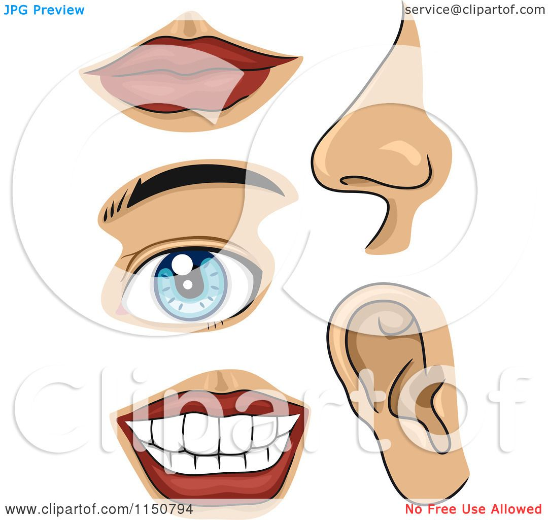 Cartoon Of Facial Body Parts