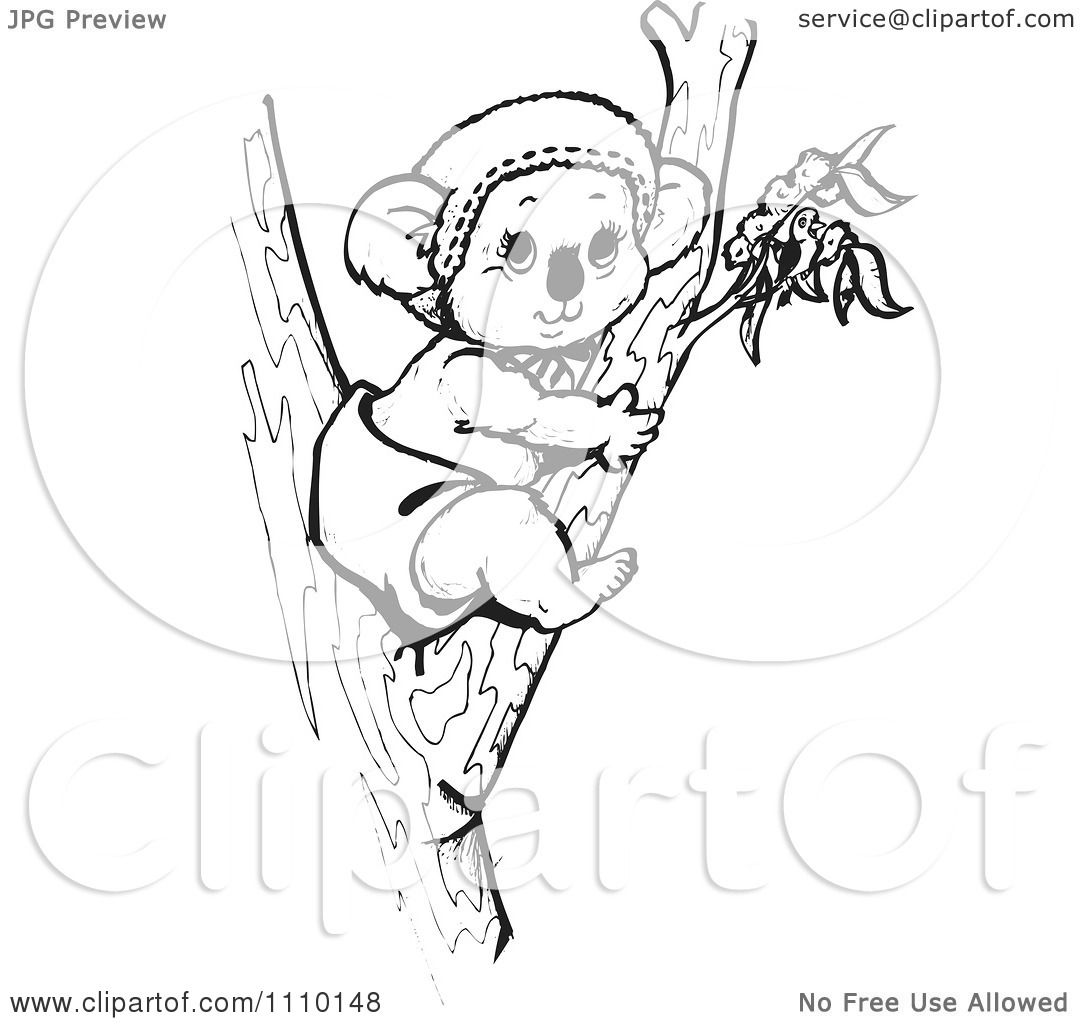 Clipart Black And White Aussie Koala Baby In A Tree