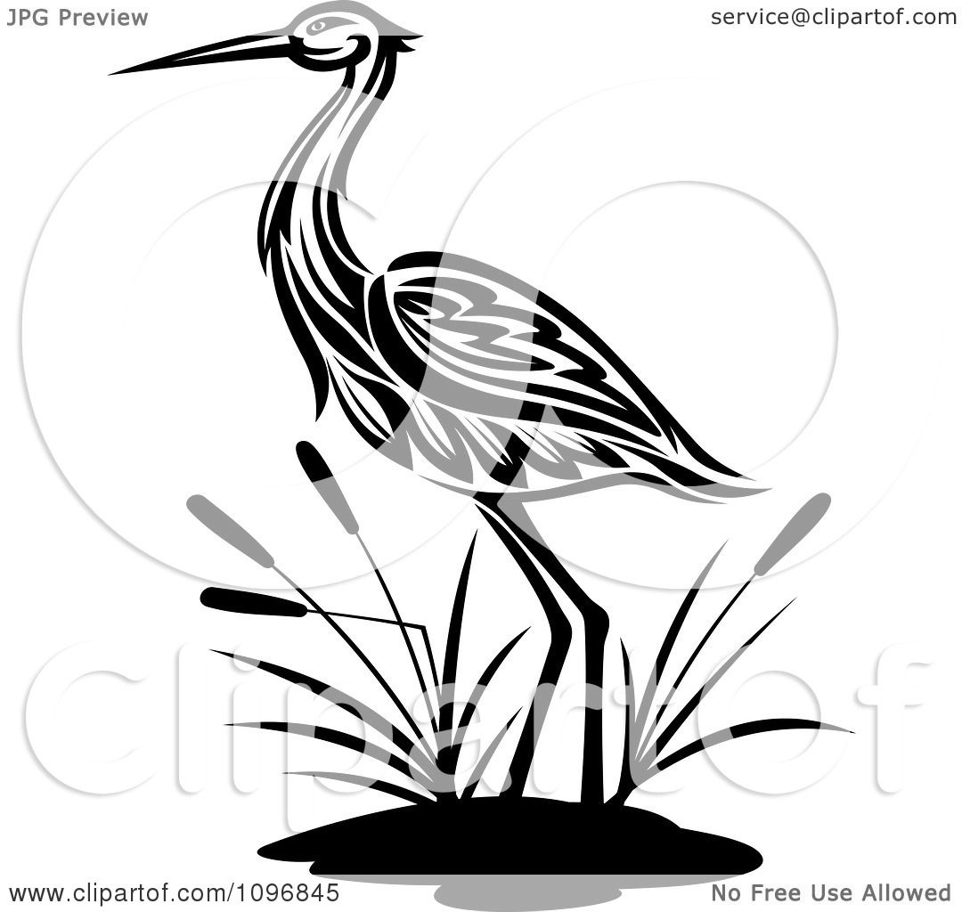 Clipart Black And White Crane Wading By Cattails