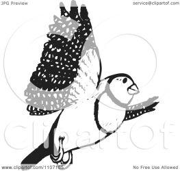 bird flying finch bar double illustration clipart vector designs royalty holmes dennis background