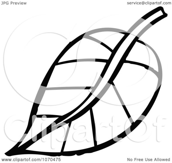 clipart black and white leaf