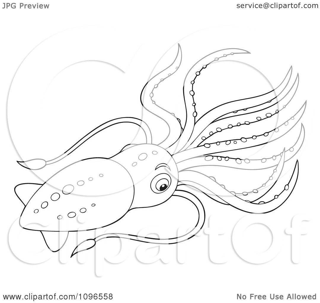 Clipart Black And White Squid