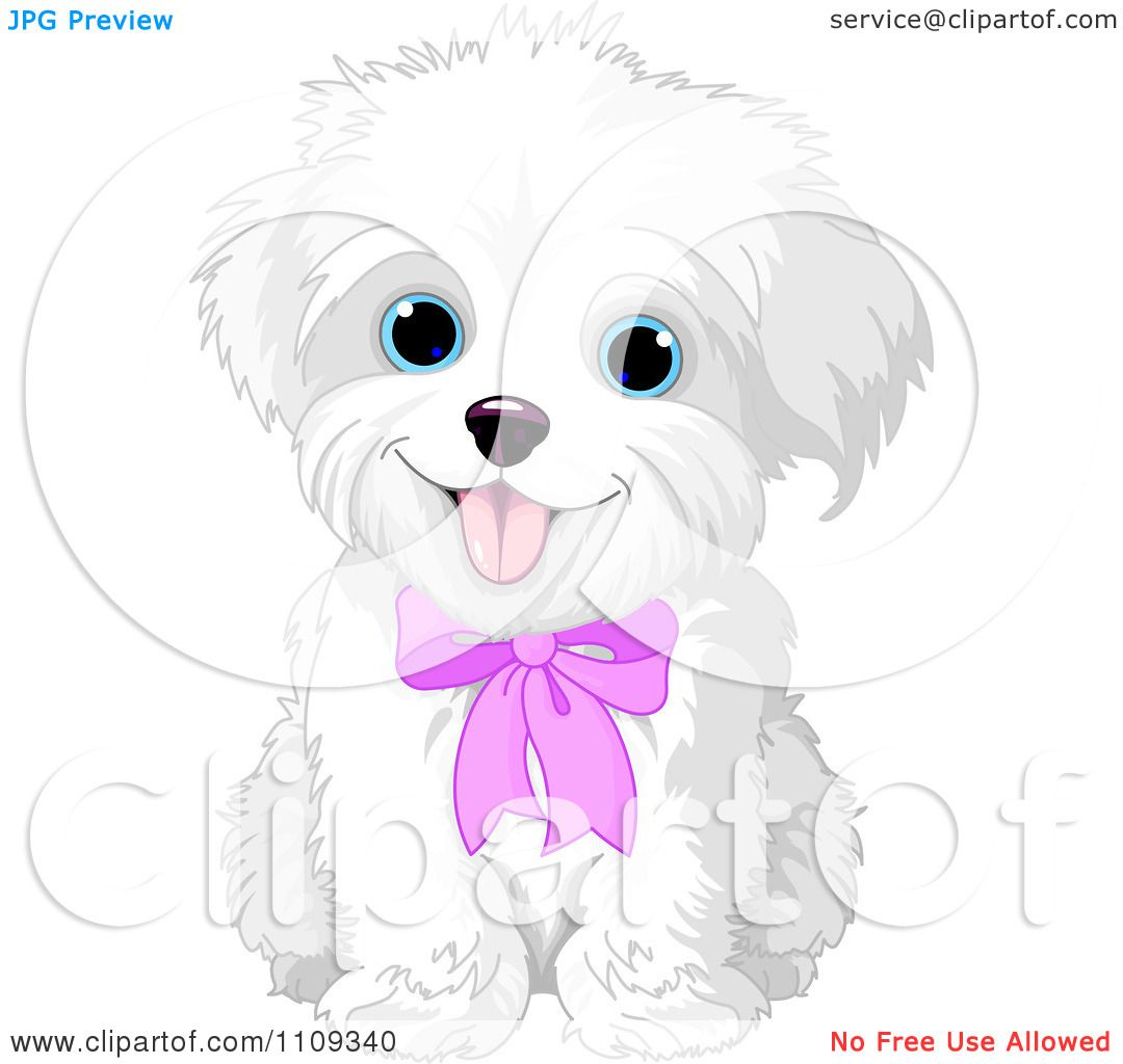 hight resolution of clipart cute bichon frise or maltese puppy dog wearing a pink bow royalty free vector