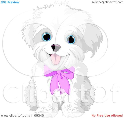 small resolution of clipart cute bichon frise or maltese puppy dog wearing a pink bow royalty free vector