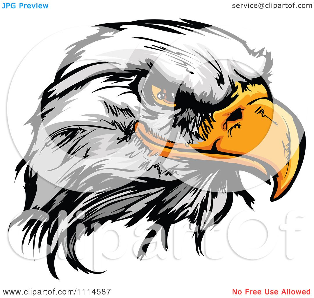 hight resolution of clipart fierce bald eagle mascot head royalty free vector illustration by chromaco