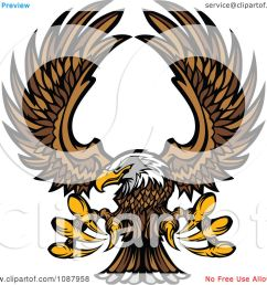 clipart flying bald eagle mascot with extended talons royalty free vector illustration by chromaco [ 1080 x 1024 Pixel ]