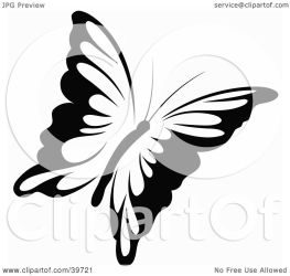 flying butterfly clipart dero protected license law copyright without