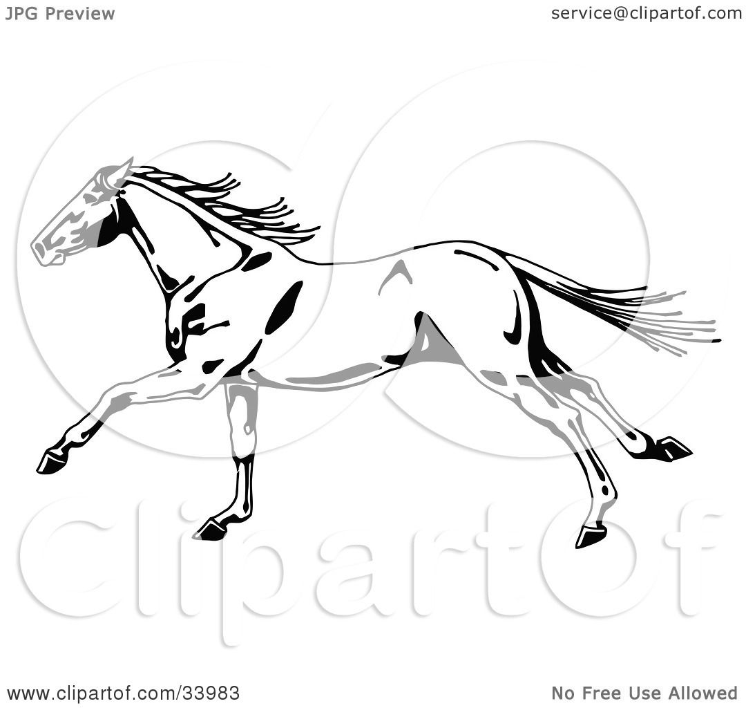 Clipart Illustration Of A Black And White Wild Horse In