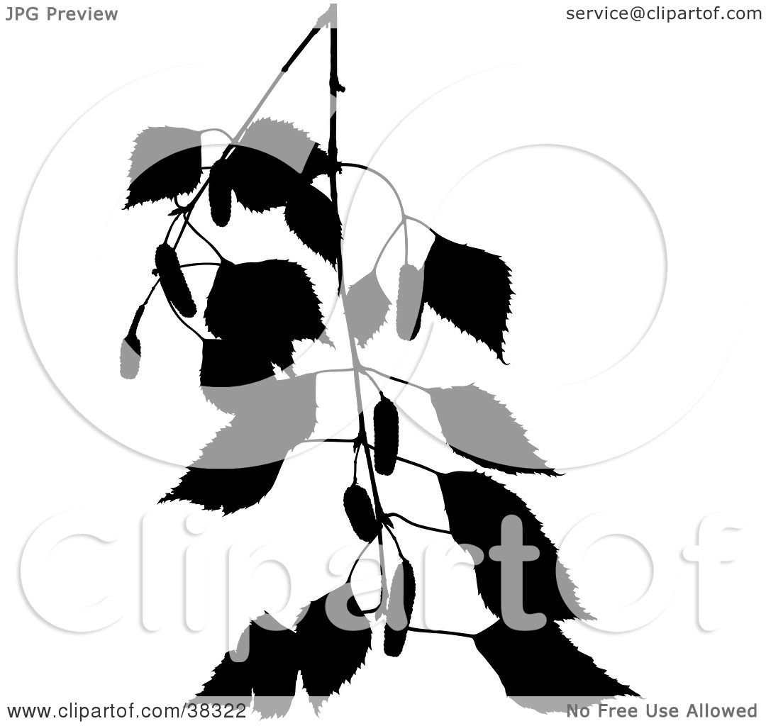 Clipart Illustration Of A Black Silhouetted Branch Of A