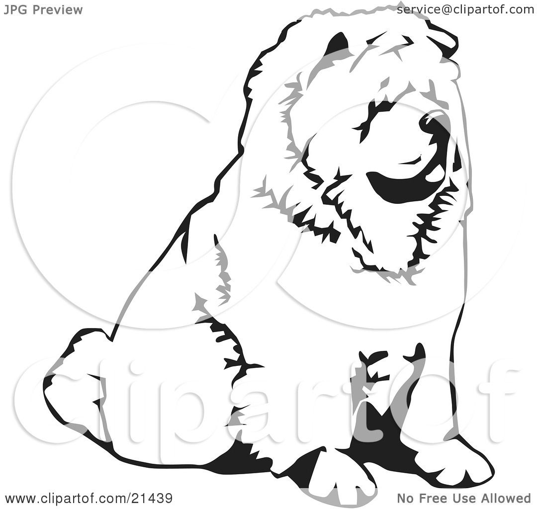 Clipart Illustration Of A Chow Chow Dog Sitting And Facing