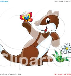 clipart illustration of a cute brown and white ferret by a flower admiring a butterfly [ 1080 x 1024 Pixel ]