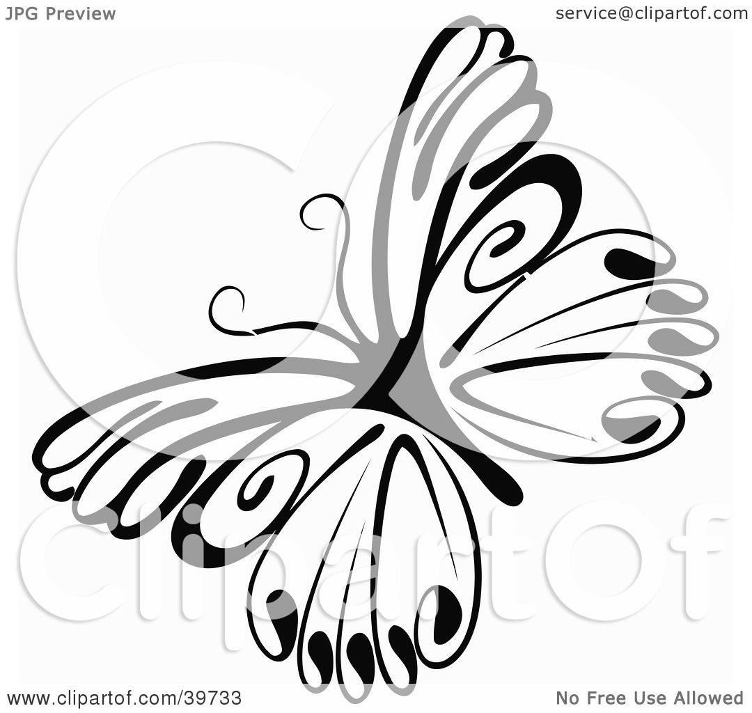 Clipart Illustration Of A Delicate Black And White