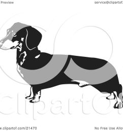 dachshund clipart dog outline weiner dog outline clipart illustration of a long dachshund doxie dackel [ 1080 x 1024 Pixel ]