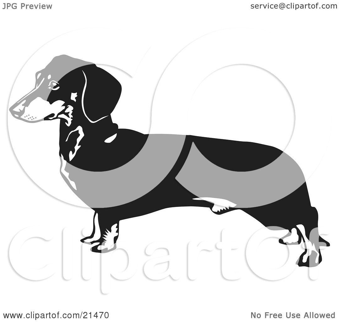 hight resolution of dachshund clipart dog outline weiner dog outline clipart illustration of a long dachshund doxie dackel