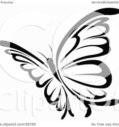 clipart illustration of a pretty black and white flying butterfly by dero [ 1080 x 1024 Pixel ]