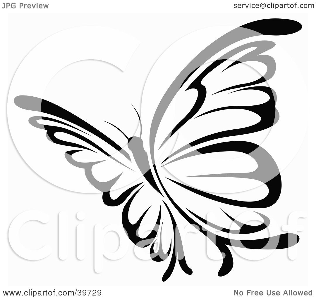 hight resolution of clipart illustration of a pretty black and white flying butterfly by dero