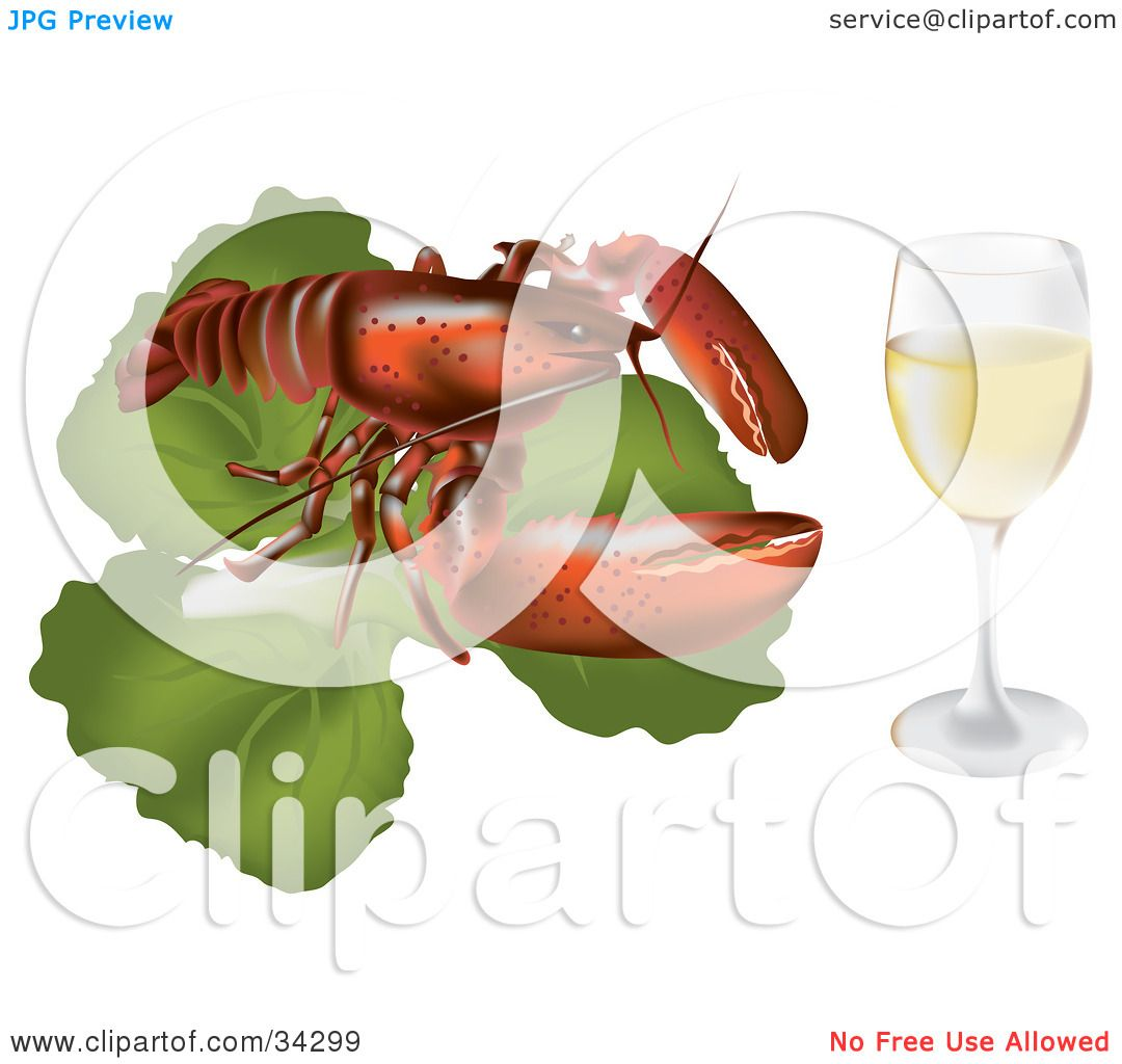 hight resolution of clipart illustration of a red lobster on top of a bed of lettuce beside a glass of white wine or champagne by eugene