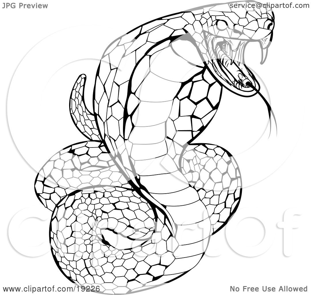 Clipart Illustration Of A Striking Venomous Cobra Snake By