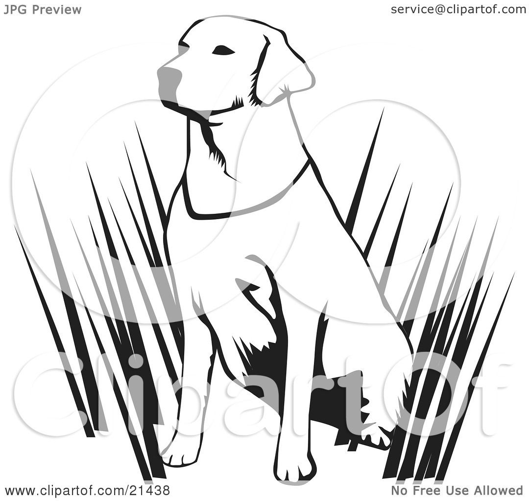 Clipart Illustration Of An Alert Labrador Retriever Dog