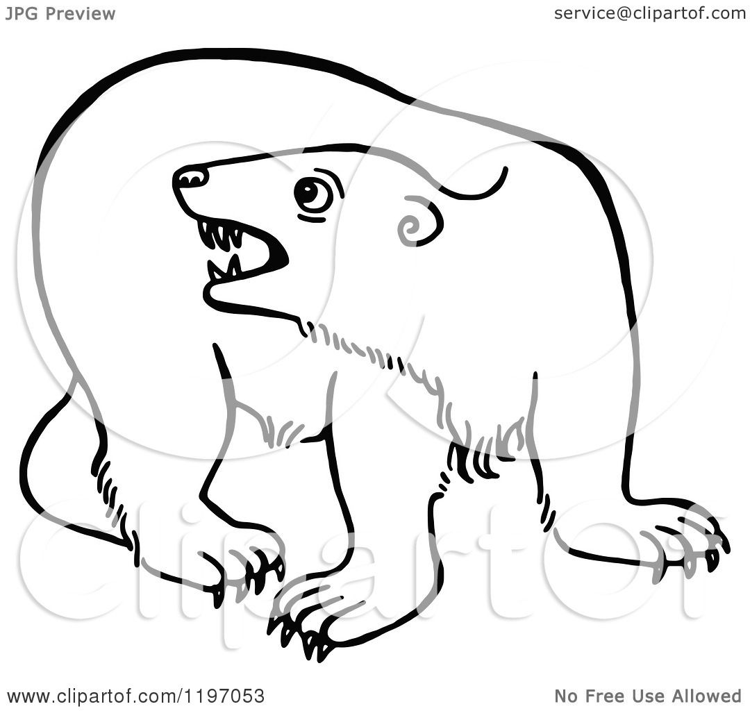 Clipart Of A Black And White Angry Polar Bear