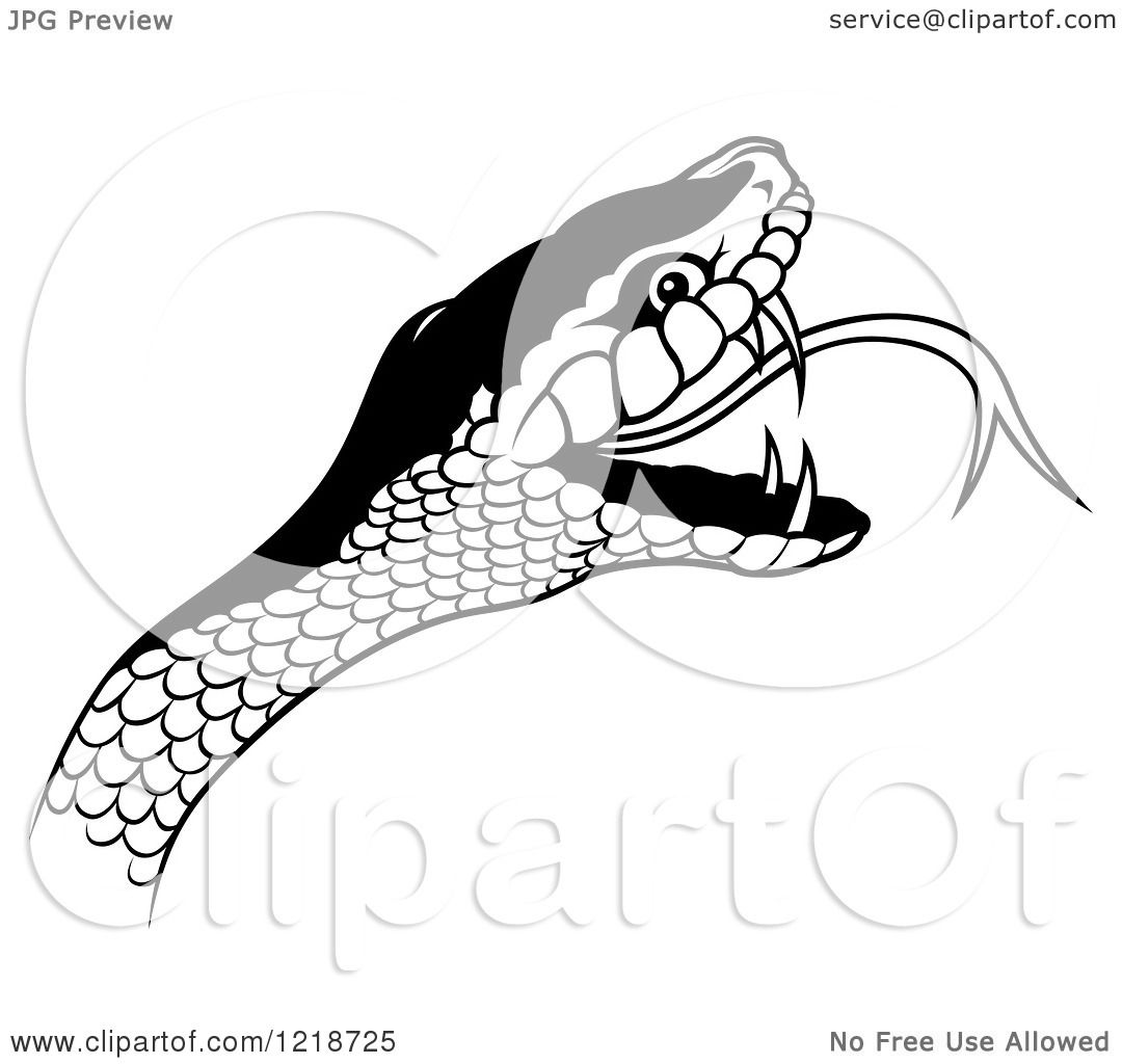 Clipart Of A Black And White Angry Snake Head