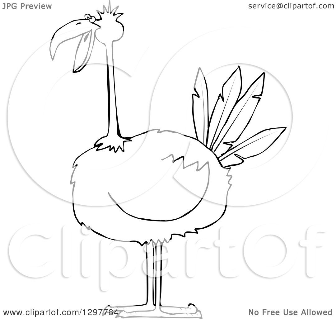 Clipart Of A Black And White Big Bird